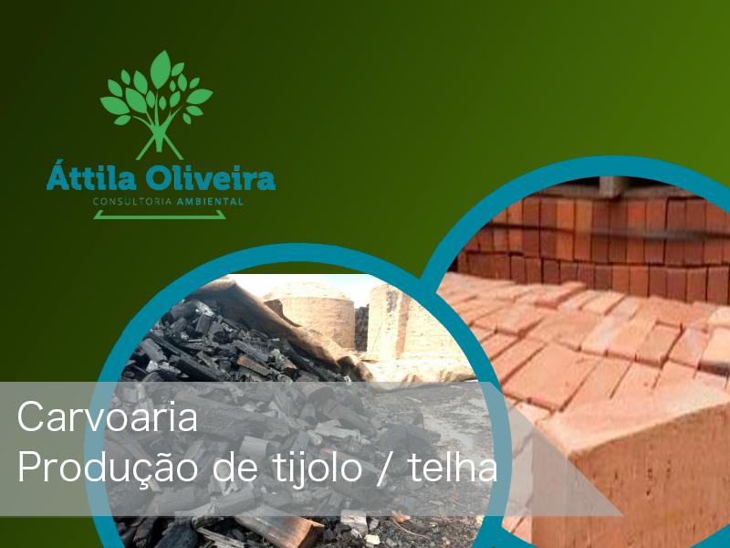 Consultoria Ambiental - Áttila Oliveira